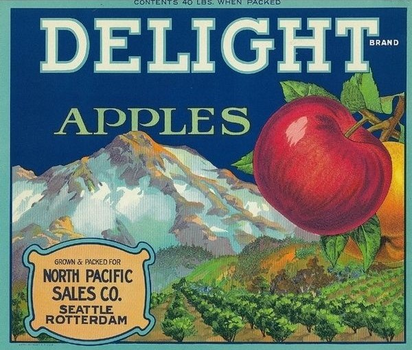 Apples: 10 Most Common Varieties (and how to use them)