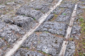 Chariot groves in stone Roman roads.