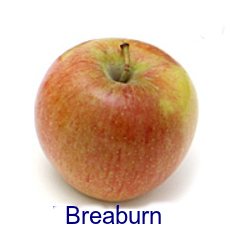 Breaburn Apple- How to Use 10 Common Apple Varieties