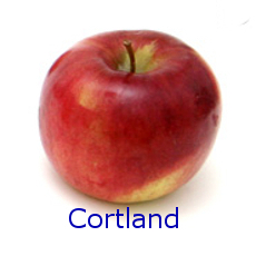Cortland Apple - How to Use 10 Common Apple Varieties