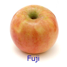 Fuji Apple - How to Use 10 Common Apple Varieties