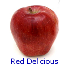 Red Delicious Apple - How to Use 10 Common Apple Varieties